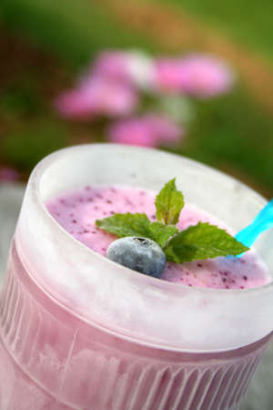 field mint: Blueberry smoothie in a frosted glass and garnished with a fresh blueberry and mint leaves. Shot outside with blurred flowers in the background. Shot with a shallow depth of field and selective focus.