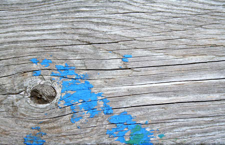 Wooden textured background with blue and green paint. photo