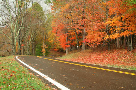 Wet road with curves on a fall day. photo