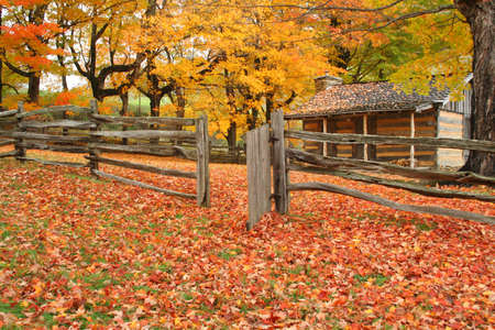Cabin and fence line with the gate open and a lot of leaves on the ground.  Taken during peak of the season in Virginia photo