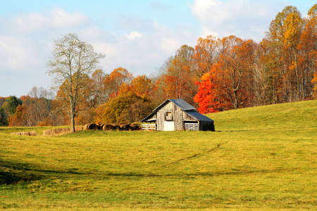 Barn with hay bales against autumn colors and a beautiful meadow with early morning light. Stockfoto