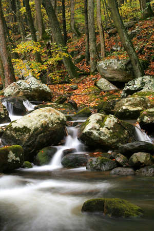 Beautiful creek captured with a slow shutter speed to create a smooth look for the water.   photo