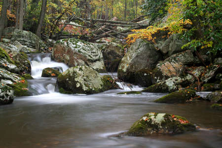 Beautiful creek during fall of the year and on a rainy day. photo