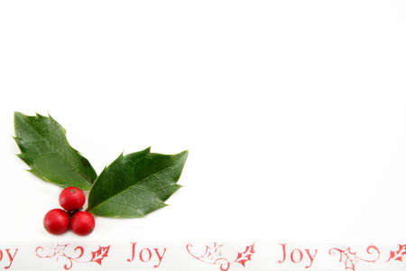 Holly leaves and berries with a decorative ribbon with the words Joy.  Room for your text.