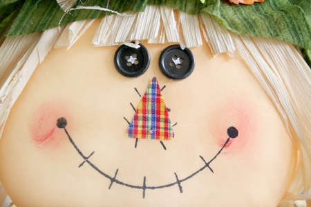 Close up of a scarecrow with a smile on his face. Stock Photo - 5784520