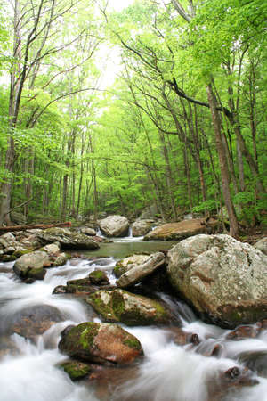 Beautiful creek right after a Spring rain with lots of boulders. Stock Photo - 7022167