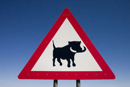 Close up of a warning sign for warthogs on the roadside in Namibia Stock Photo - 4991460