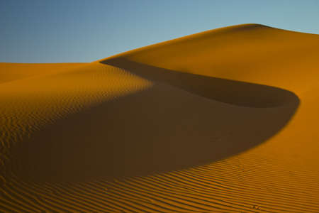 Golden sand dune in the evening light with blue sky and large shadow photo