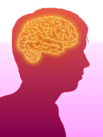 Illustrated side view of a man showing the brain