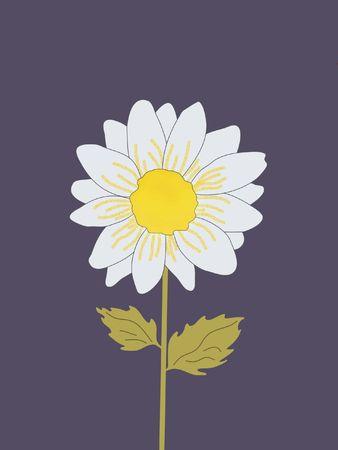 Illustrated Flower Stock Photo - 2221241