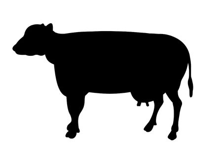 Silhouette illustration of a cow on a white background illustration