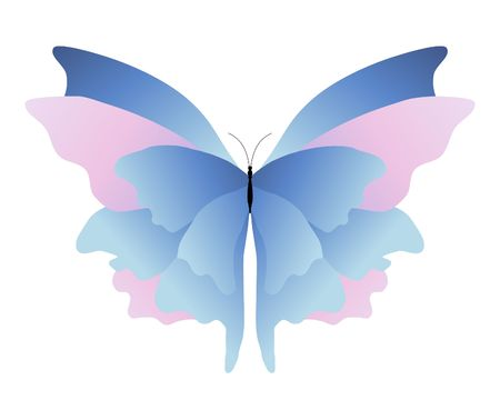 metamorphosis: illustration of a pink and blue butterfly on a white background