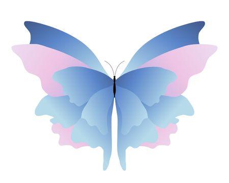 metamorfosis: ilustraci�n de una rosa y mariposa azul sobre fondo blanco