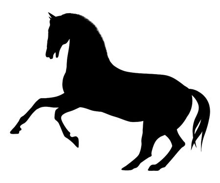 bucking horse: Illustrated horse silhouette Stock Photo