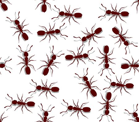 formicidae: Illustration of seamless ants on a white background Stock Photo