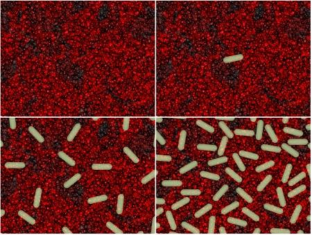 Cuatro etapas de crecimiento bacteriano Foto de archivo