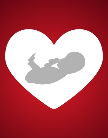 Fetus inside a white heat with a red background photo