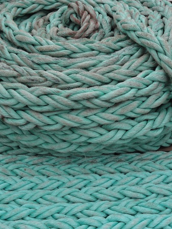 coiled: close up photo of green rope