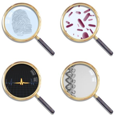 evidence: Illustration of four isolated magnifying glasses