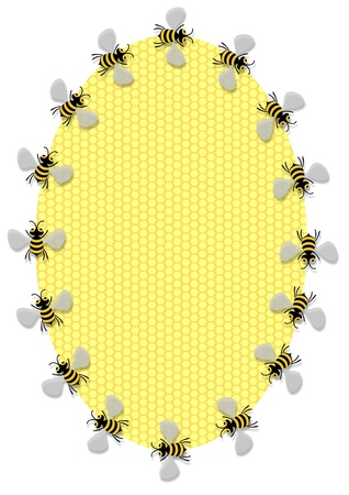 Illustration of a oval honeycomb frame surrounded by bees illustration