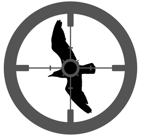 gun sight: Illustration of a silhouette bird with a gun  sight aiming at its body