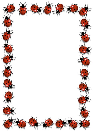 Illustration of a frame made of ladybirds illustration