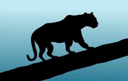 Illustration of a panther walking across a tree branch