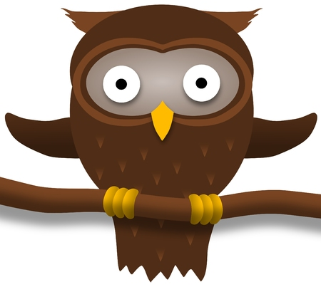 perched: illustration of a brown owl perched on a branch