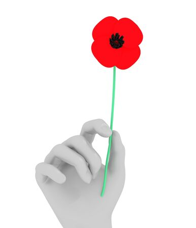 hand holding flower: Illustration of a hand holding a Poppy flower