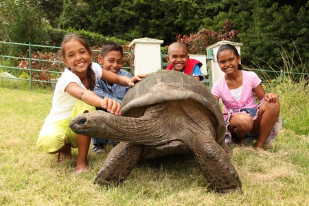 School children with giant tortoise on St Helena. Jonathan is a famous giant tortoise on St Helena Island who is estimated to be 150 to 200 years old weighing 440 pounds photo