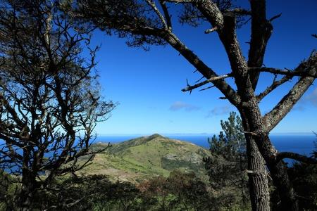 helena: Man and Horse countryside landmark on St Helena