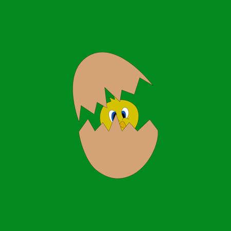 Broken cartoon eggs with chicken. Illustration