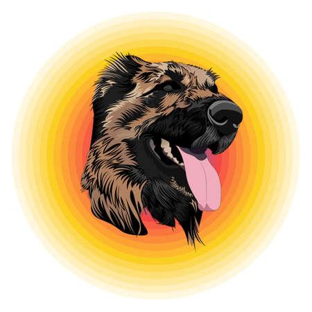 Beautiful dog icon. Vector muzzle dog on colorful background.