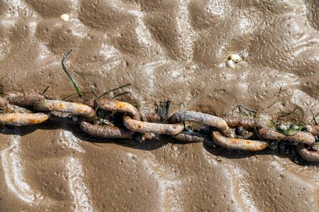 Discarded rusty chain in wet sand