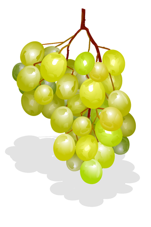 fruitful: bunch of grapes