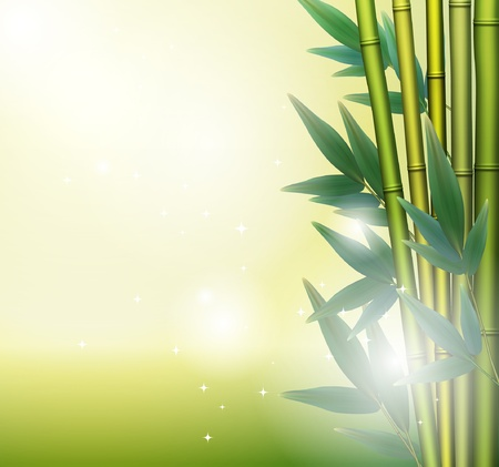 Glowing bamboo background  Vector
