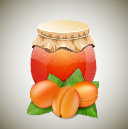 Jar of jam with aprikots and leave Vector