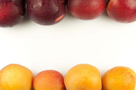 peaches and apricots in a row on white background