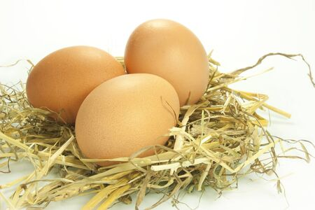 chicken eggs laid on straw Stock Photo