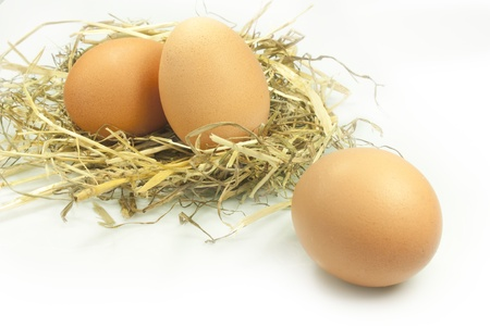 straw twig: chicken eggs laid on straw Stock Photo