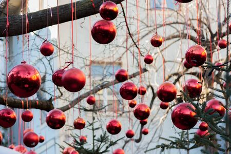 red christmas ball: Christmas red balls hanging from the branches of a tree with lights Stock Photo