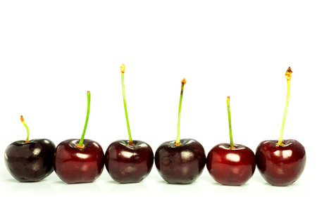 red ripe cherries on a white background