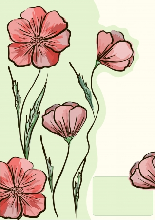 Red poppies on a light green background Vector