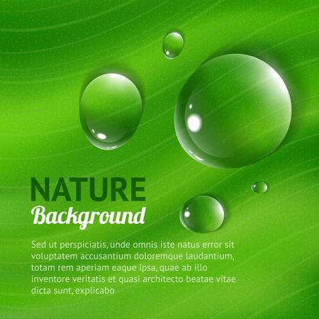 Natuur achtergrond met transparante water druppels Stock Illustratie