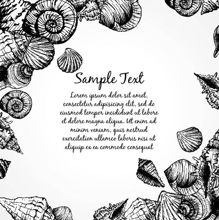 cockle: Hand drawn pattern with various seashells and place for text. Abstract vector background with bubbles. Vector illustration for your design