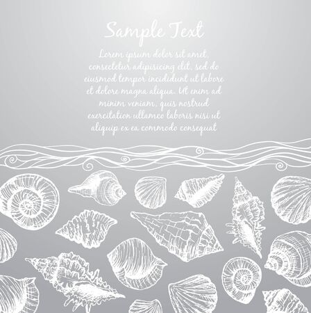 cockle: Hand drawn pattern with various seashells and place for text