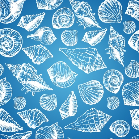 cockleshells: Hand drawn seamless pattern with various seashell Illustration