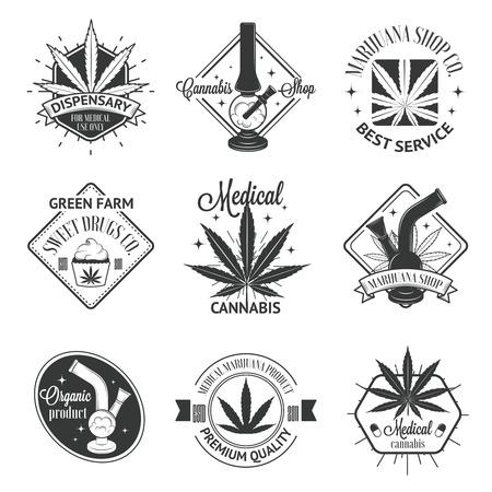 marihuana: Conjunto de insignias de la marihuana medicinal. Insignias de cannabis, etiquetas y logos