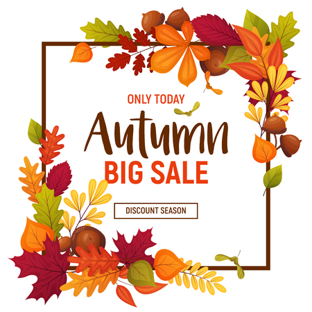 Autumn sale poster with cartoon acorns and various leaves. Colorful template for your design card Stock Illustratie