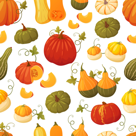 Autumn seamless pattern of colorful pumpkins of different types, shapes and colors. Stock Illustratie